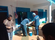 सिन्धुपाल्चोकको चौतारा साँगाचोकगढी नगरमा कुकुर बन्ध्याकरण अभियान सञ्चालन