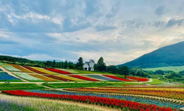कोभिड–१९ सङ्क्रमण नियन्त्रणका लागि जापानमा स्वास्थ्य सङ्कटकाललाई निरन्तरता